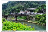 20140620 新北市 三貂嶺車站 火車拍拍:DSC_7434.JPG