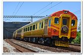 20180728 宜蘭 英國阿婆自強號 追火車 隨拍:DSC_7083.JPG
