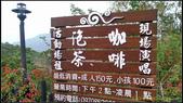 20140322_小崗山雲仙境:20140322_08.jpg