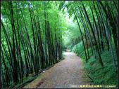 20050624_龍興宮-華山-雲林大尖山 環形縱走:20050624_a1.jpg