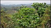 20110417_鳥松 尖山嶺-石牛山-五湖山 連走:20110417_09.jpg