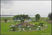 20150509_高美濕地:20150509_72.jpg