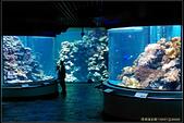 20150523_車城海生館、海口:20150523_05.jpg