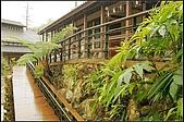 內湖森林小學:DSC07585.jpg
