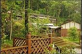 內湖森林小學:DSC07586.jpg