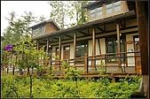 內湖森林小學:DSC07591.jpg