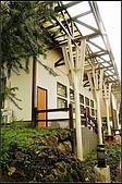 內湖森林小學:DSC07639.jpg