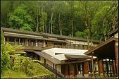 內湖森林小學:DSC07661.jpg