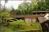 內湖森林小學:DSC07663.jpg