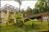 內湖森林小學:DSC07666.jpg