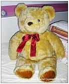 JOJO❤隨性拍:我的寶貝熊依然不住在台灣