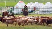 北疆  North Xinjiang - 20180701:07040521喀納斯賈登峪.jpg