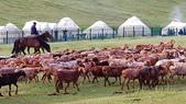 北疆  North Xinjiang - 20180701:07040519喀納斯賈登峪.jpg