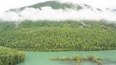 北疆  North Xinjiang - 20180701:07040402喀納斯臥龍灣.JPG