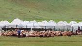 北疆  North Xinjiang - 20180701:07040523喀納斯賈登峪.jpg