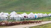 北疆  North Xinjiang - 20180701:07040515喀納斯賈登峪.jpg