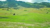 北疆  North Xinjiang - 20180701:07050331喀納斯環山公路.jpg
