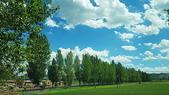 北疆  North Xinjiang - 20180701:07100205南山牧場.jpg