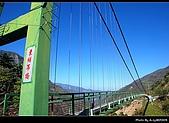 2009-1/10~1/11 南投賞梅之旅:DSC_4521.jpg