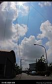 2008-9/6~9/8六十石金針之旅 Part Ⅰ:DSC_7535.jpg
