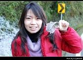 2009-1/10~1/11 南投賞梅之旅:DSC_4575.jpg