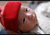 2008-2-29 阿泰的小朋友:DSC_7735.jpg
