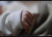 2008-2-29 阿泰的小朋友:DSC_7737.jpg