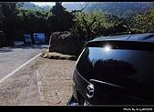 2009-1/10~1/11 南投賞梅之旅:DSC_4317.jpg