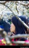 2009-1/10~1/11 南投賞梅之旅:DSC_4344.jpg