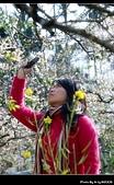 2009-1/10~1/11 南投賞梅之旅:DSC_4345.jpg