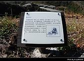 2009-1/10~1/11 南投賞梅之旅:DSC_4536.jpg