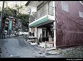 2009-1/10~1/11 南投賞梅之旅:DSC_4501.jpg