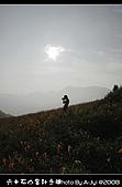 2008-9/6~9/8六十石金針之旅 Part Ⅱ:DSC_8451.jpg