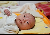 2008-2-29 阿泰的小朋友:DSC_7706.jpg
