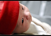 2008-2-29 阿泰的小朋友:DSC_7756.jpg