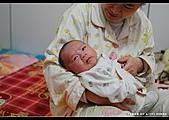 2008-2-29 阿泰的小朋友:DSC_7714.jpg