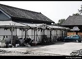 2009-1/10~1/11 南投賞梅之旅:DSC_4301.jpg