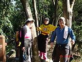 登山步道091018:十號步道-7.JPG