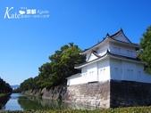 2014 京都大阪10日:PA080467.JPG