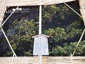 【京都】2016新年京阪走春。Day 4-3。平安神宮、山元麵藏烏龍麵:P2120560.JPG
