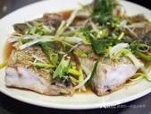 【淡水】尚格鐵板燒。1200無菜單料理篇:【淡水】尚格鐵板燒。1200無菜單料理篇