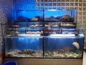 田園海鮮餐廳(原田園小館):KT050114.JPG