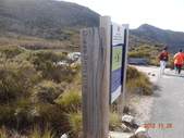 8 Day Australia Tasmania 5:DSC03601.JPG