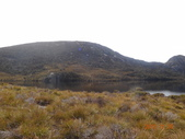 8 Day Australia Tasmania 5:DSC03619.JPG