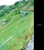 980924機車環島第三天(台東):DSC_0397.jpg