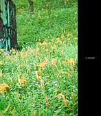 980924機車環島第三天(台東):DSC_0386.jpg