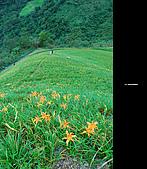 980924機車環島第三天(台東):DSC_0394.jpg