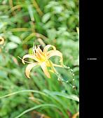 980924機車環島第三天(台東):DSC_0381.jpg