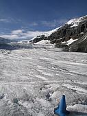 冰原&傑士伯國家公園:哥倫比亞冰原