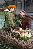 2011台灣花卉展:星光花舞